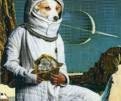 Oliver Dunne & Siobhán McCooey: Animal World: Dog on Moon (Laika)